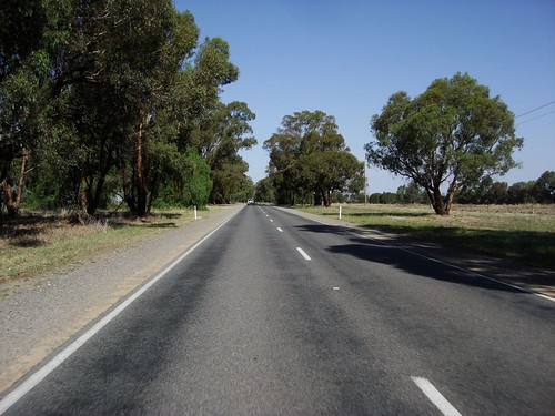 Near the Murray River