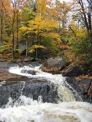 Arrowhead park River