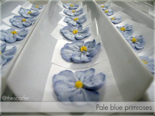 Pale blue primroses