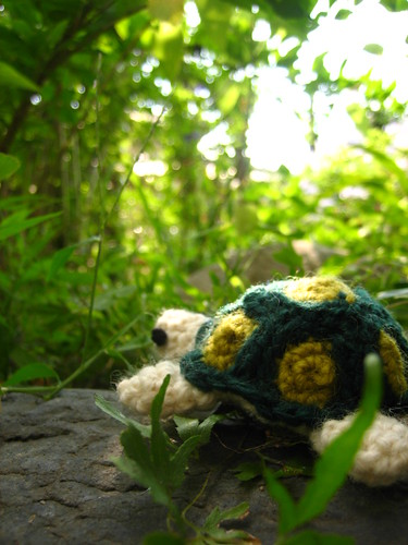 Cute little turtle!!