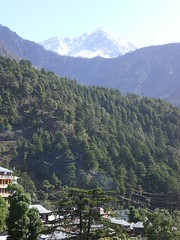 McLeod Ganj, wiew from my window