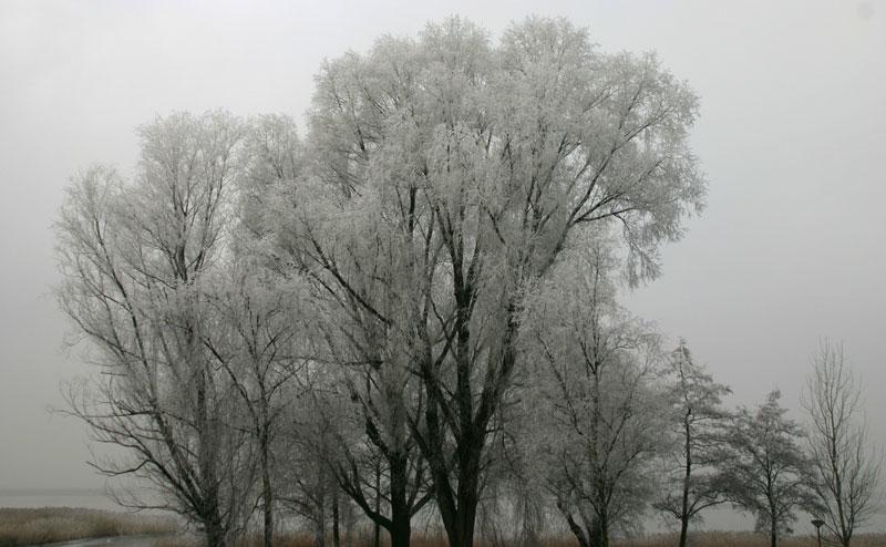 Uitsn.mist-IMG_8480a