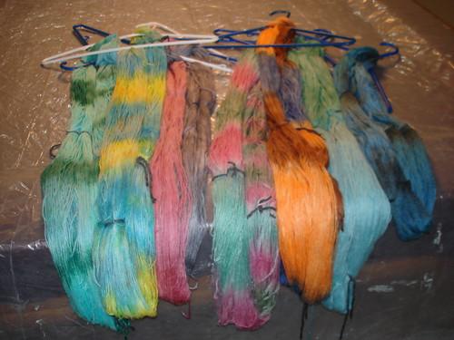 2008 Winter Dye Day 2-2-2008 4-27-27 PM