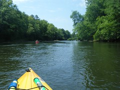 Saluda River Paddle-23