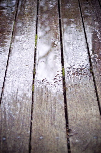 rainyday3 copy