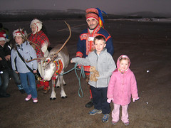 Reindeer Reception Committee