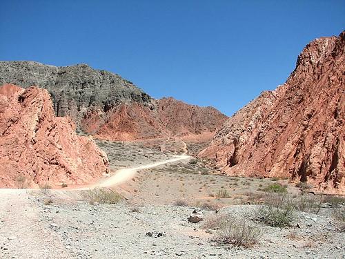 El paseo de los Colorados 1 (by morrissey)