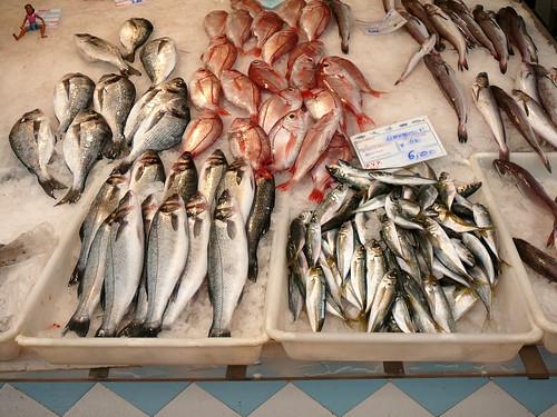banca de peixe por *L.