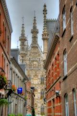 Het Leuvense stadhuis