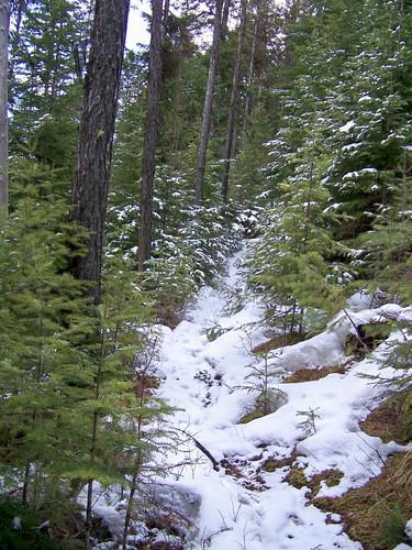 Trail 223