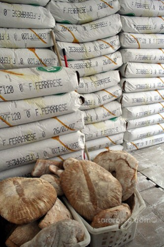 Flour and Bread: from Raw Material to Finished Product