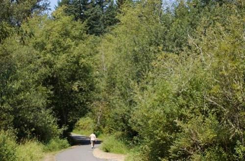 Soos Creek Trail