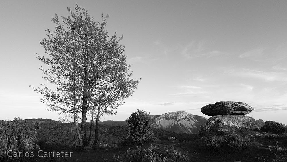 Árbol, Tozal de Guara y dolmen