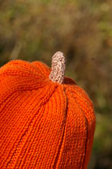 knitted pumpkin stem
