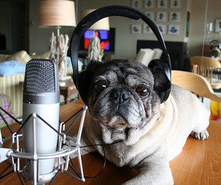 Roscoe Considers Recording a Podcast