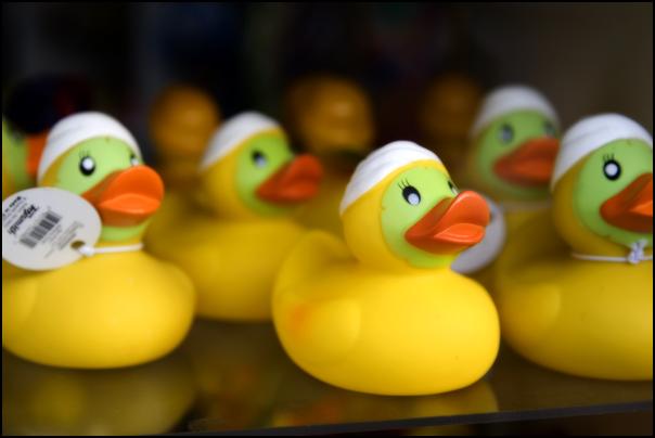 spa rubber duckie