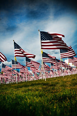 Remember our Fallen Heroes.
