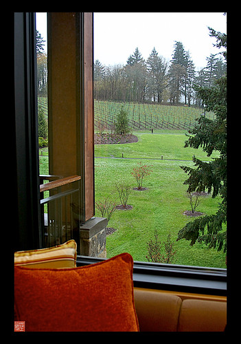 View from our room on the roadtrip this weekend to wine country/Willamette Valley Oregon