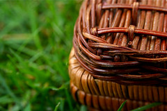 Wicker Picnic Basket Grass 6-1-09 3