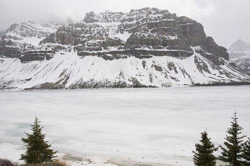 Bow Lake, still frozen in end May, is the source of the Bow River