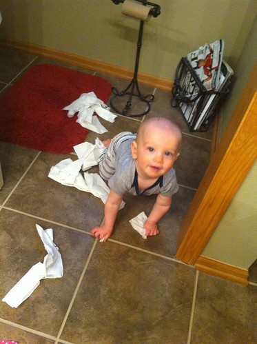 I'm not supposed to play with the toilet paper? Hmm.