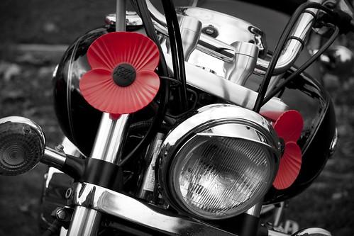 Bike with Poppies