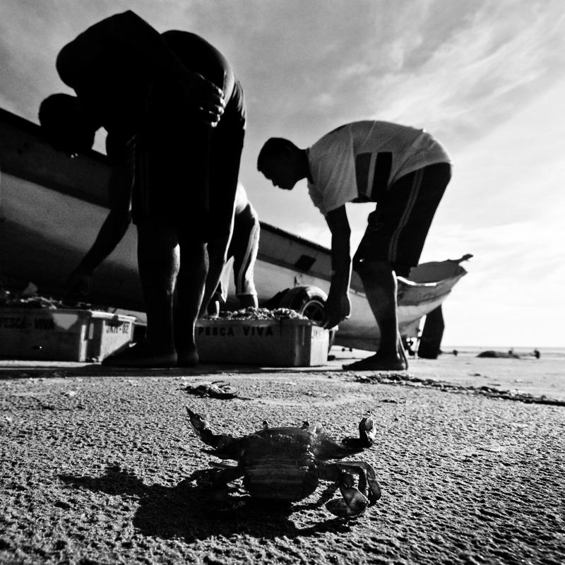 Imagem da chegada do camarão em Itanhém, atentamente observada. Integrará o projeto Pescadores, Primeira Parte