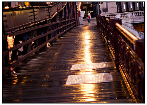 Bridges were Paved With Gold