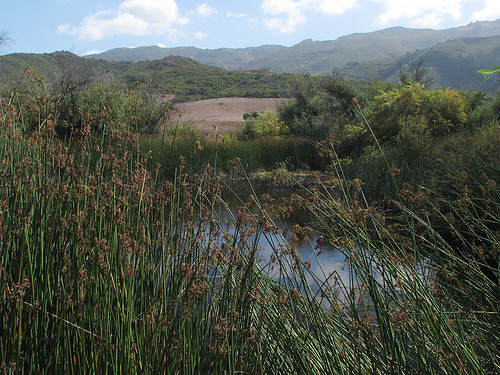 Rancho Sierra Vista Satwiwa 07
