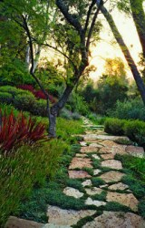 Scattered stone path