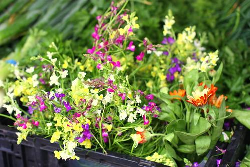 Tenafly Farmers Market 06/21/2009 by you.