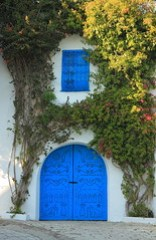 House in Sidi Bou Said