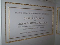 Darwin and Wallace at the [old] Linnean Society