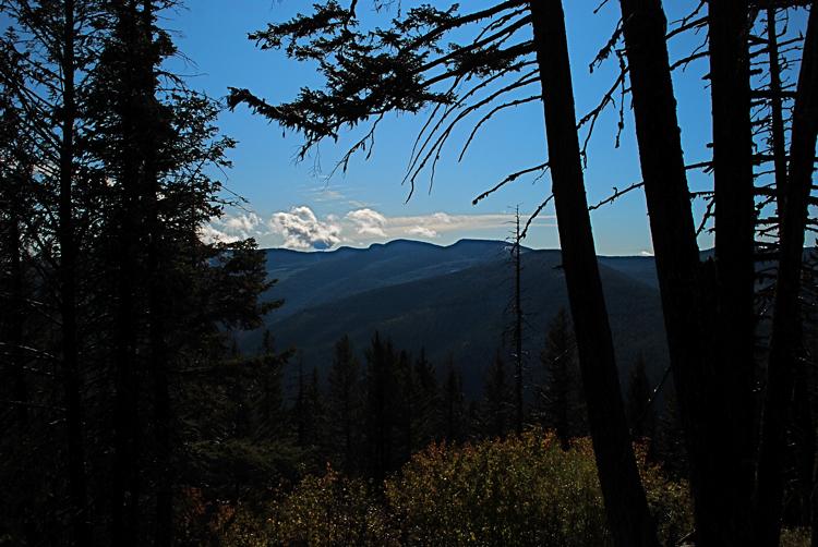 From Priscilla Peak trail