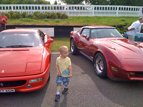 Ferrari and Stingray