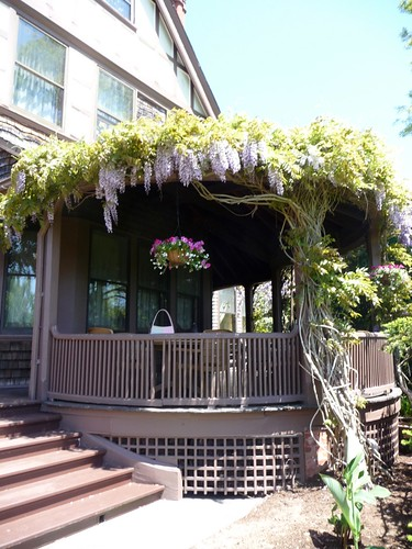 Westbrook Porch with Wisteria