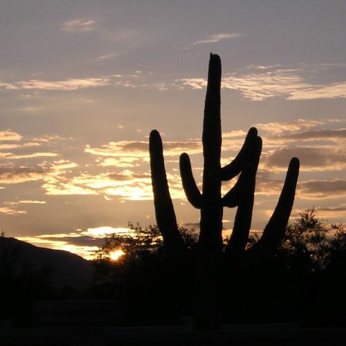 Arizona Sunrises