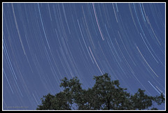 First Attempt at Star Trails