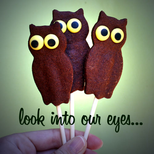 owl cookies from Bake it Pretty blog.