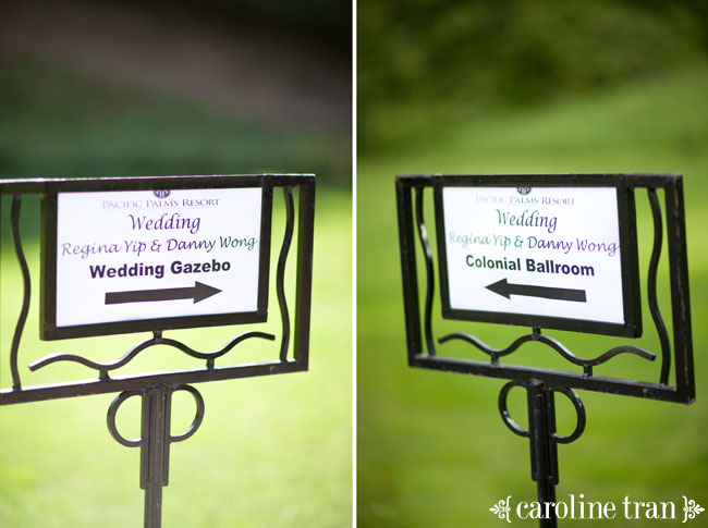 the wedding is this way
