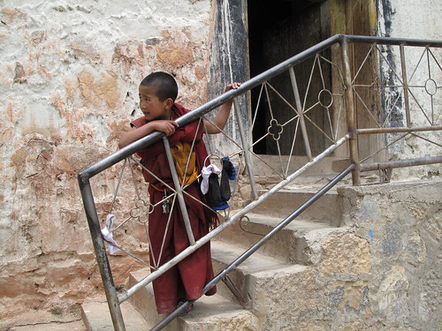 Little Monk at Tibetan Monastery in Shangri-la