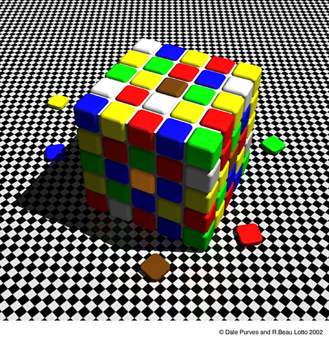 Color cube Purves