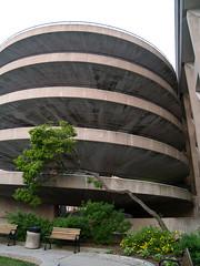 parking-garage-tree