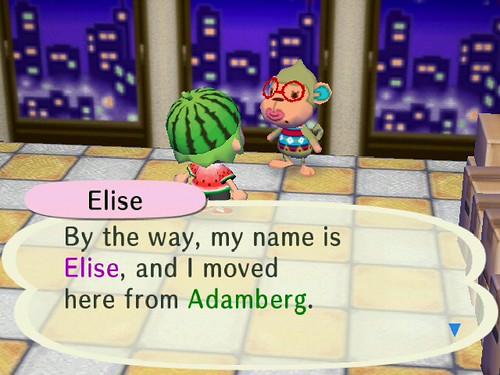 Meet Elise!