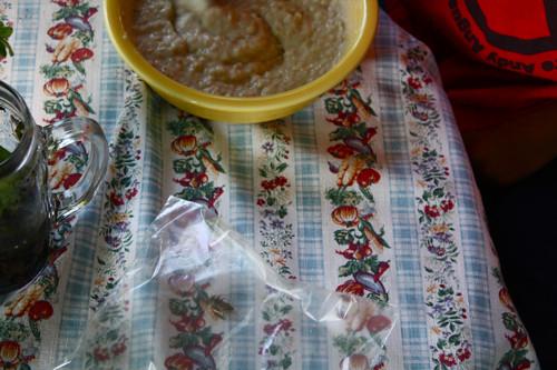 oatmeal and bugs