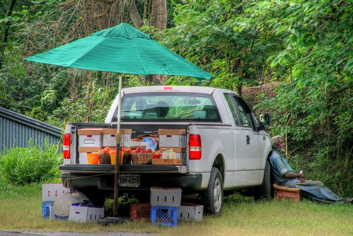 The Roadside Stand