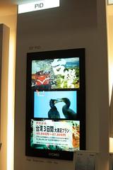 Display Taiwan 2009