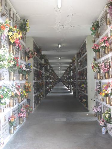 modena corridor