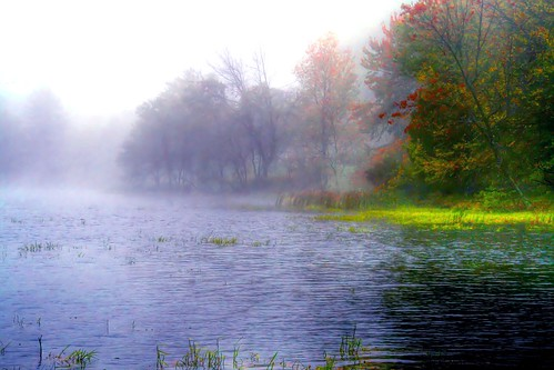 The Encompassing Fog of Autumn