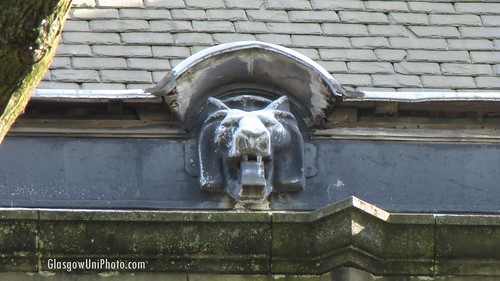 Lion On The Roof